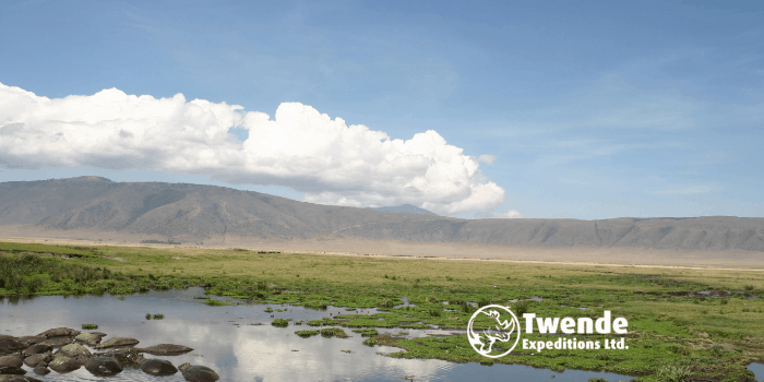 10-days-tanzania-safari