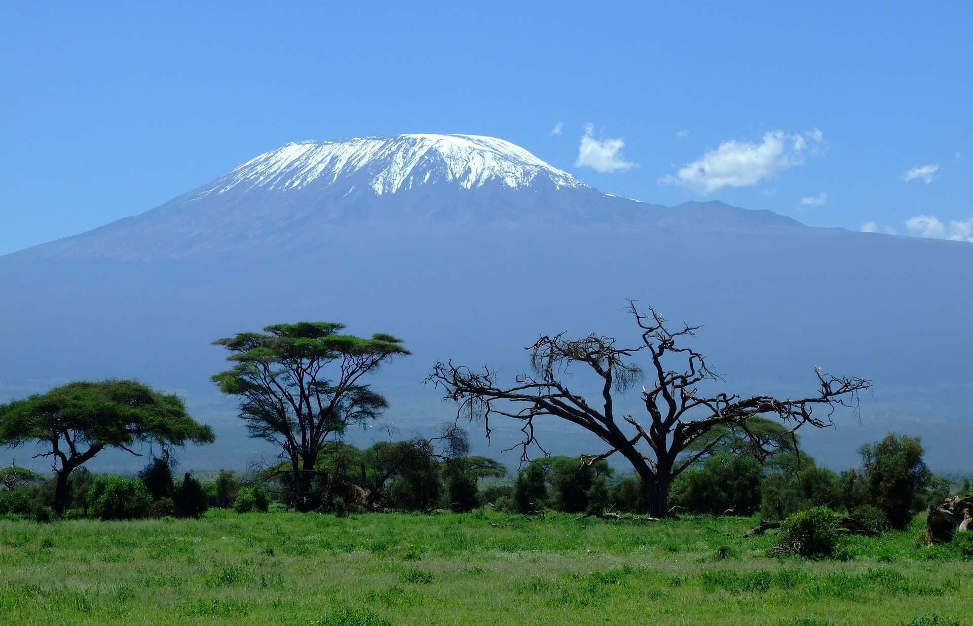 12-days-kenya-&-tanzania-safari