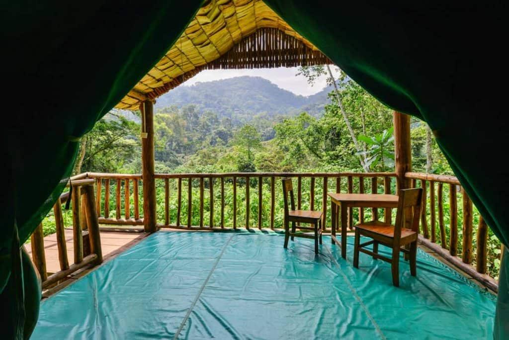 Papaya Lake Lodge