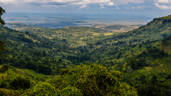 Mountain elgon national park terrain in Eastern Uganda