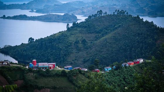 bwindi impenetrable chameleon hill lodge