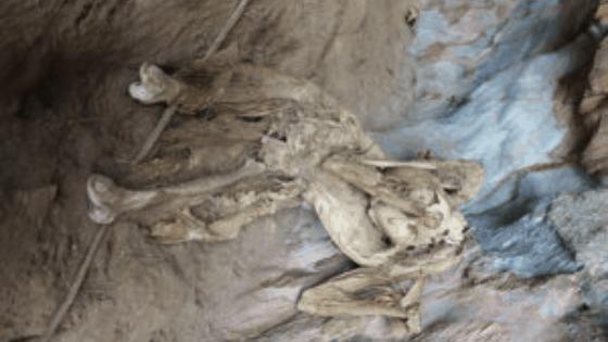 punishment islands skeletons
