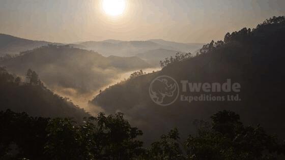Bwindi Gorilla Trekking Sectorrs